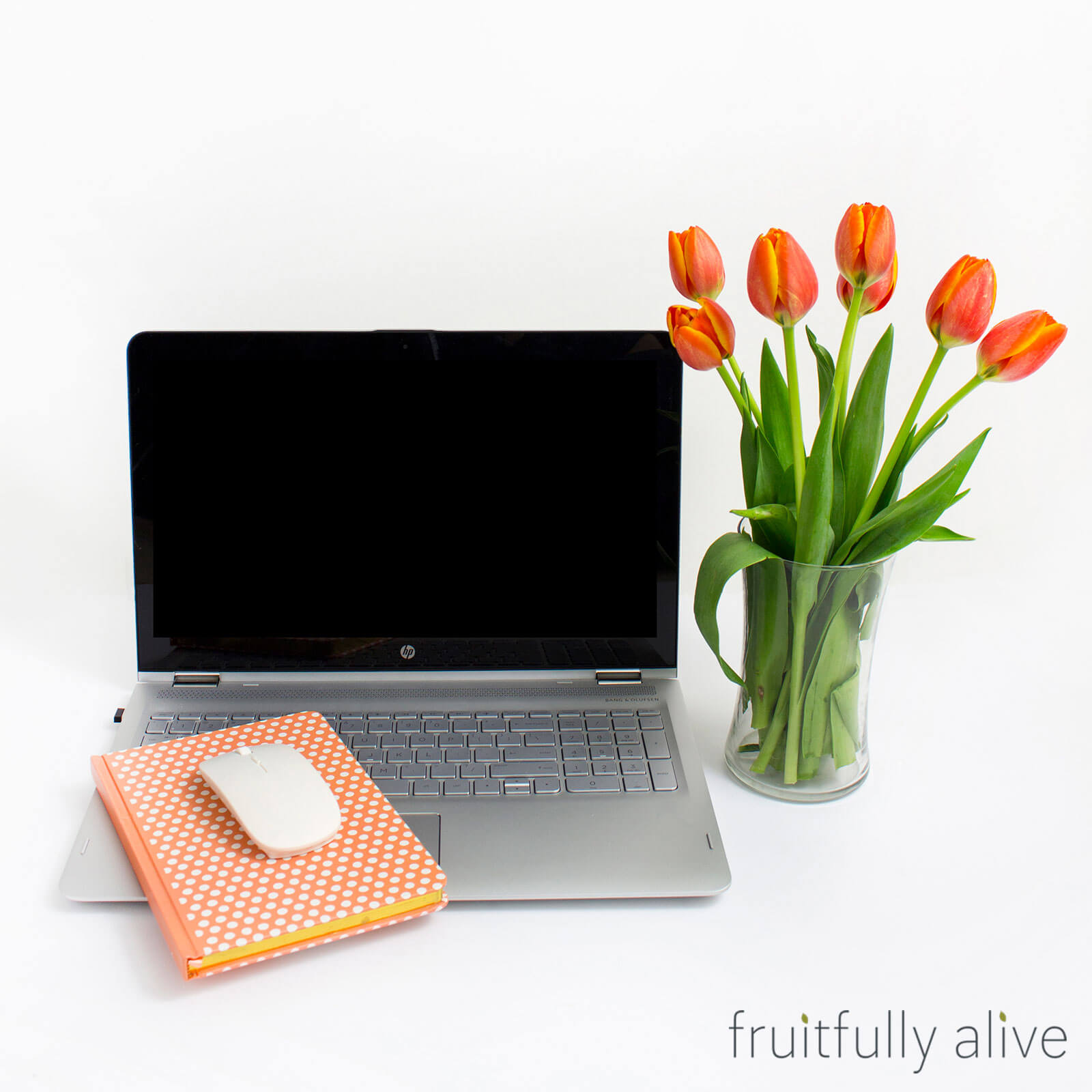 Win the Ultimate Virtual Assistant Jumpstart Giveaway