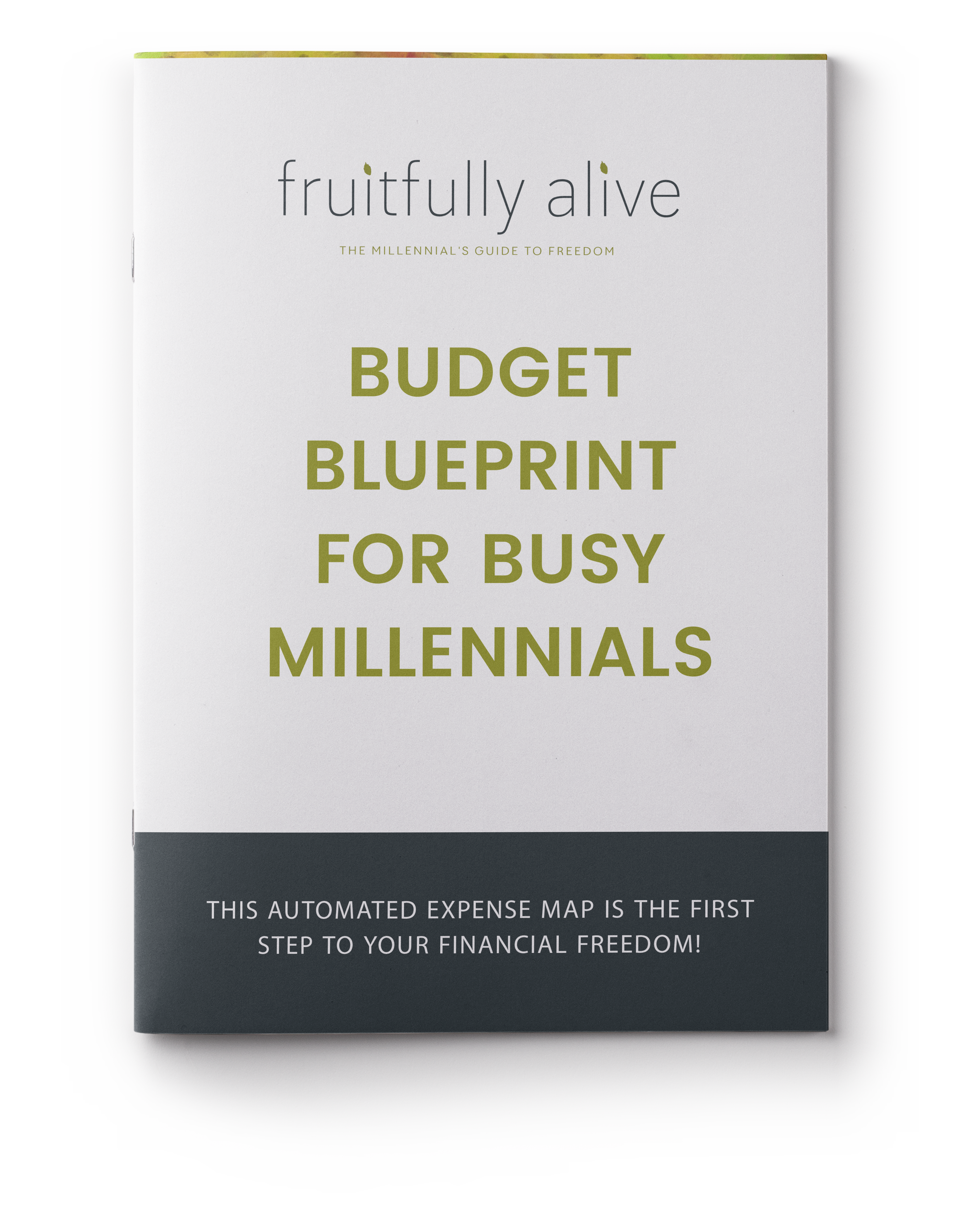 The ultimate list of budget categories fruitfully alive budget blueprint for busy millennials malvernweather Gallery