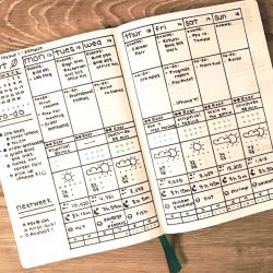 <b>Weekly Log by Ashlyn at Nittany Bujo</b></br>This weekly is very comprehensive; a great way to view your week in its entirety.
